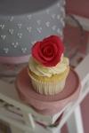corisst_Cupcakes_0017