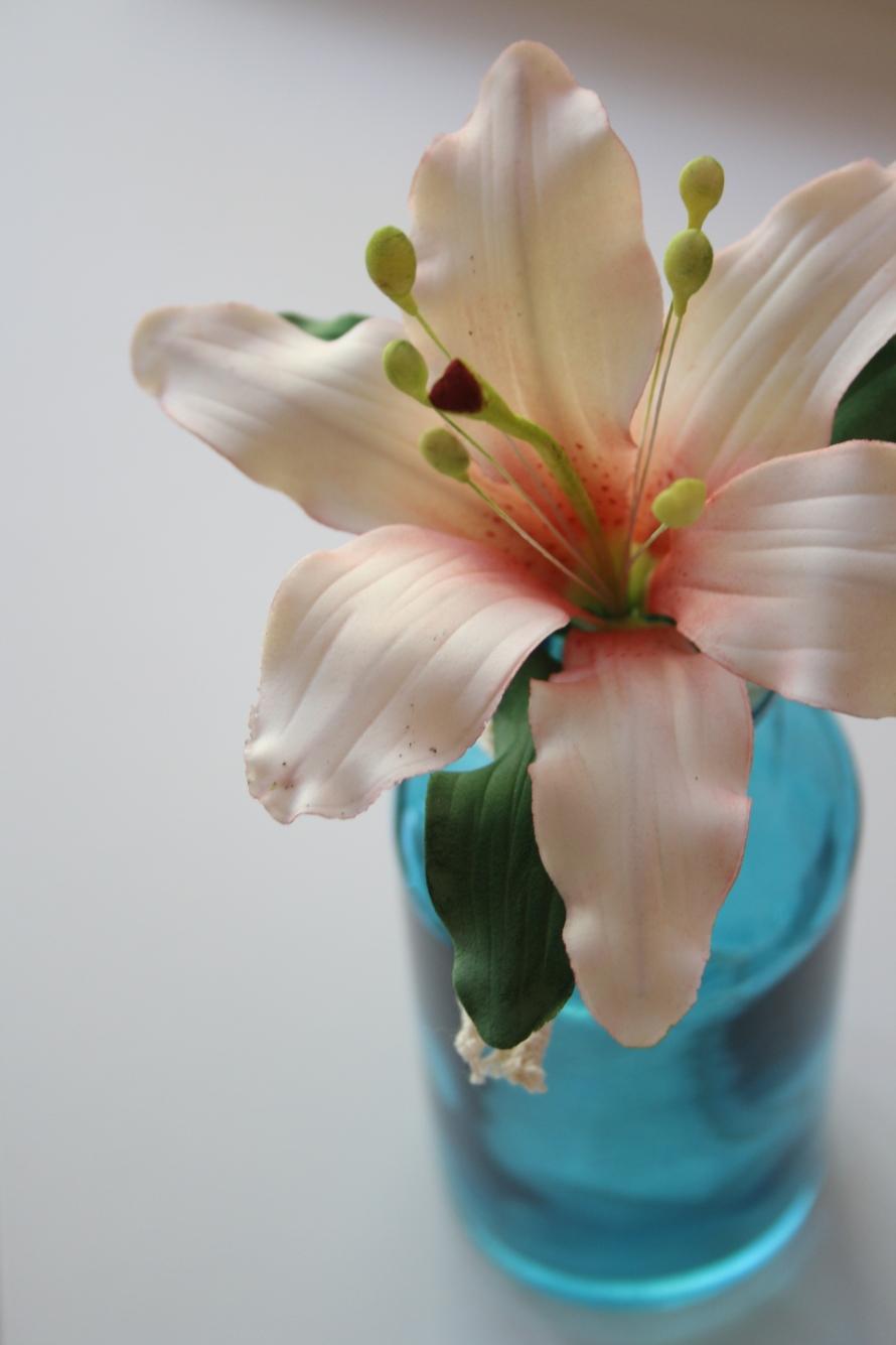 flores 013